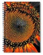 Coneflower Heart Spiral Notebook