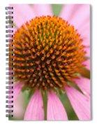 Coneflower2 Spiral Notebook