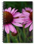 Coneflowers - Echinacea Purpurea Spiral Notebook