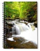 Conestoga Falls Spiral Notebook