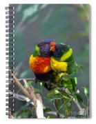 Confide A Secret Spiral Notebook