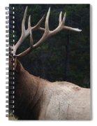 Confident Spiral Notebook