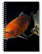 Confrontation Of 3 Koi Spiral Notebook
