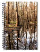 Congaree Reflections Spiral Notebook