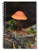 Conical Wax Cap Mushroom Spiral Notebook