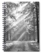 Coniferous Forest In Early Morning Spiral Notebook