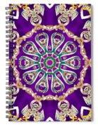 Conscious Carousel Spiral Notebook
