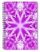 Conscious Rippled Light Spiral Notebook