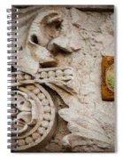 Conservation Stone Spiral Notebook