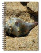 Conshohocken Maple Syrup Spiral Notebook