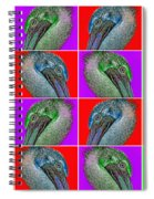 Contemporary Pelicans II Spiral Notebook