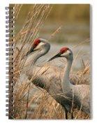 Content Pair Spiral Notebook