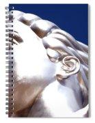 Contralto 18 Spiral Notebook