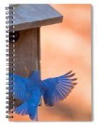 Contrast In Colors Spiral Notebook