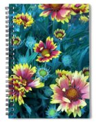 Contrasting Colors Orignial Spiral Notebook