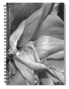 Contrasting Hibiscus Spiral Notebook