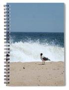 Conversation On The Beach Spiral Notebook