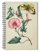 Convolvulus With Yellow Butterfly Spiral Notebook