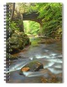 Cook Forest Stream Under The Bridge Spiral Notebook