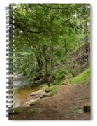 Cook Forest Toms Run Steps Spiral Notebook