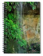 Cool And Refreshing Spiral Notebook