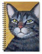 Cool Cat Spiral Notebook