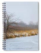 Cool Dreams Winter Spiral Notebook