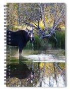 Cool Fall Air Spiral Notebook