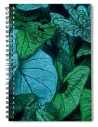 Cool Leafy Green Spiral Notebook