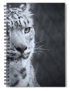 Cool Leopard Spiral Notebook