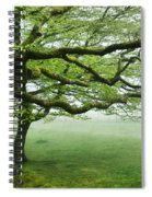 Cool Misty Day At Blackbury Camp Spiral Notebook