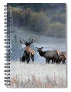 Cool Misty Morning Spiral Notebook