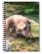 Cool Pig Spiral Notebook