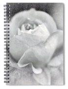 Cool Rose Spiral Notebook