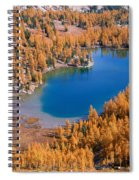 Cooney Lake Larches Spiral Notebook