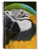 Cooper... Spiral Notebook
