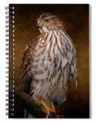 Coopers Hawk Portrait 1 Spiral Notebook