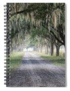 Coosaw Fog Avenue Of Oaks Spiral Notebook