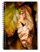 Copper Beech Leaves Spiral Notebook