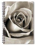 Copper Rose Spiral Notebook
