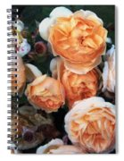 Copperblush Spiral Notebook