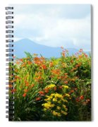 Coppertips On The Dingle Peninsula Spiral Notebook