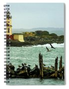 Coquille River Lighthouse And Birds Spiral Notebook