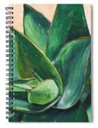 Coral Aloe 3 Spiral Notebook