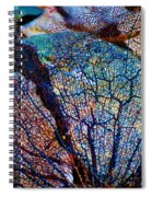 Coral Beached Spiral Notebook