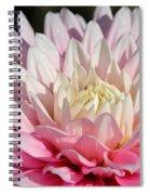 Coral Dahlia Spiral Notebook
