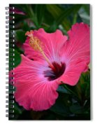 Coral Hibiscus Spiral Notebook