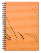 Coral Pink Sands 1 Spiral Notebook