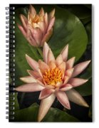 Coral Pink Water Lilies Spiral Notebook