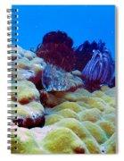 Corals Underwater Spiral Notebook
